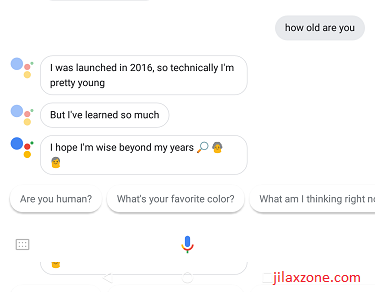 DIY Smart Speaker jilaxzone.com Google Assistant how old are you