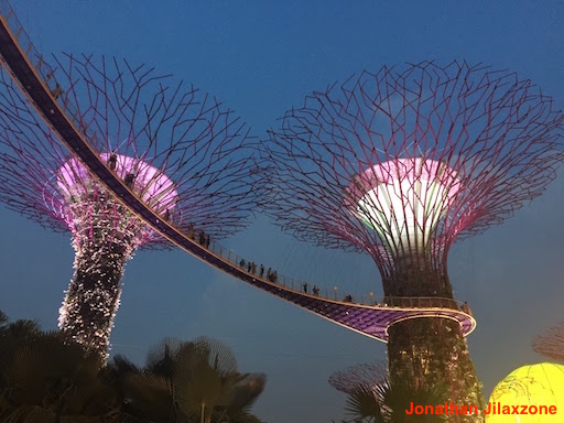 Must Visit Place in Singapore jilaxzone.com OCBC Skyway at Gardens by the bay Super Tree