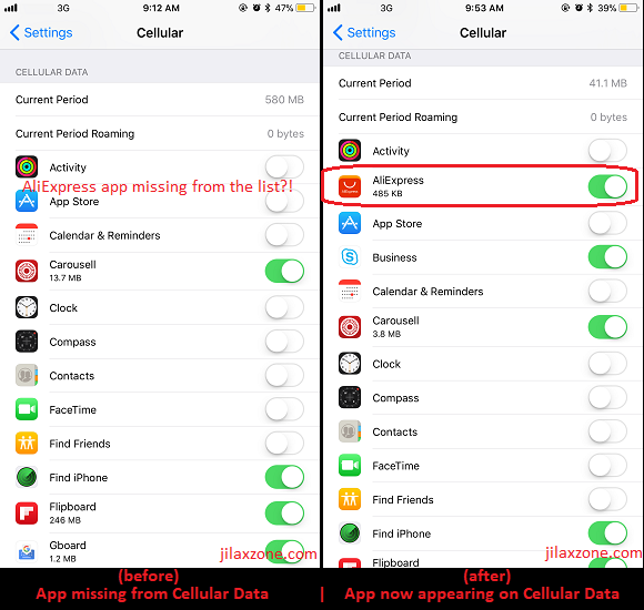 iOS 11 Cellular Data jilaxzone.com app missing and appear on Cellular Data