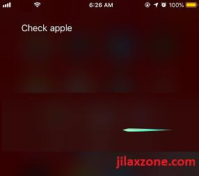 iOS 12 Siri Shortcuts invoking siri to check apple jilaxzone.com